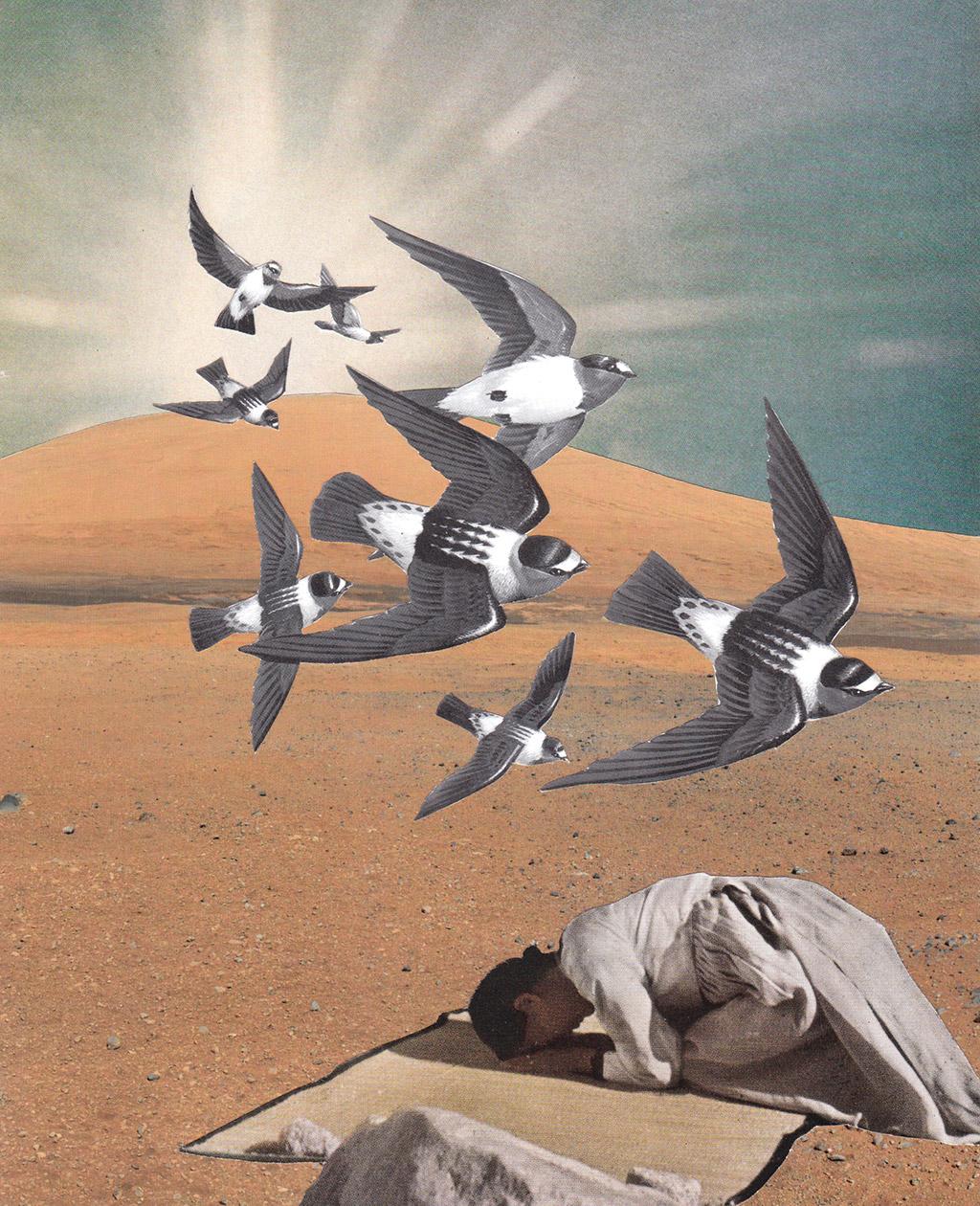 Prayer Flight